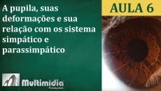 Aula 6 - Curso de Iridologia e Irisdiagnose