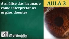 Aula 3 - Curso de Iridologia e Irisdiagnose