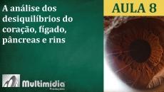 Aula 8 - Curso de Iridologia e Irisdiagnose