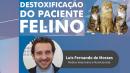 Detoxificação do Paciente Felino